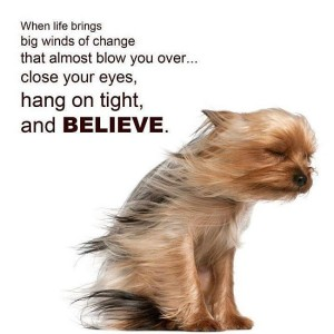 Beleive-Quote-Dog-Picture