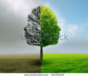 stock-photo-human-emotion-and-mood-disorder-tree-shaped-as-two-human-faces-with-one-half-empty-branches-and-261782546
